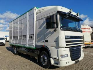 DAF 105.460 pro přepravu zvířat