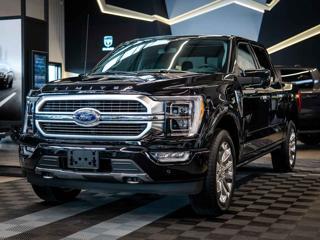 Ford F-150 3.5 Limited Full Hybrid Pro7kW pick up hybridní - benzin