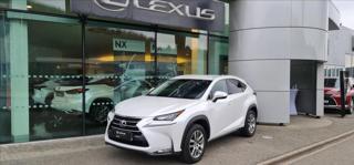 Lexus NX 300h 2.5  4V Limited Edition - ST SUV hybridní - benzin